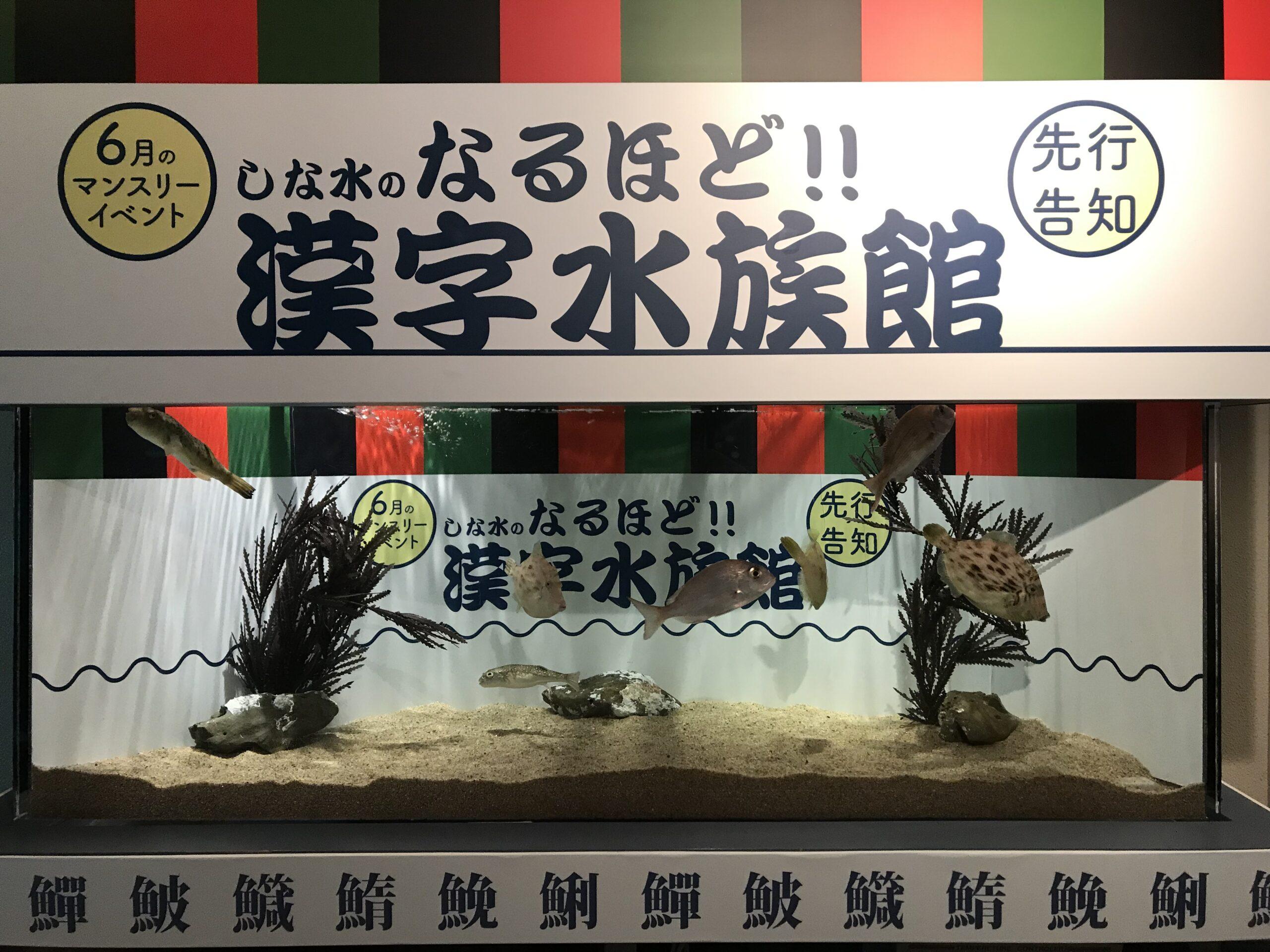 水族館で漢字の勉強?「しな水のなるほど!!漢字水族館」6月1日より