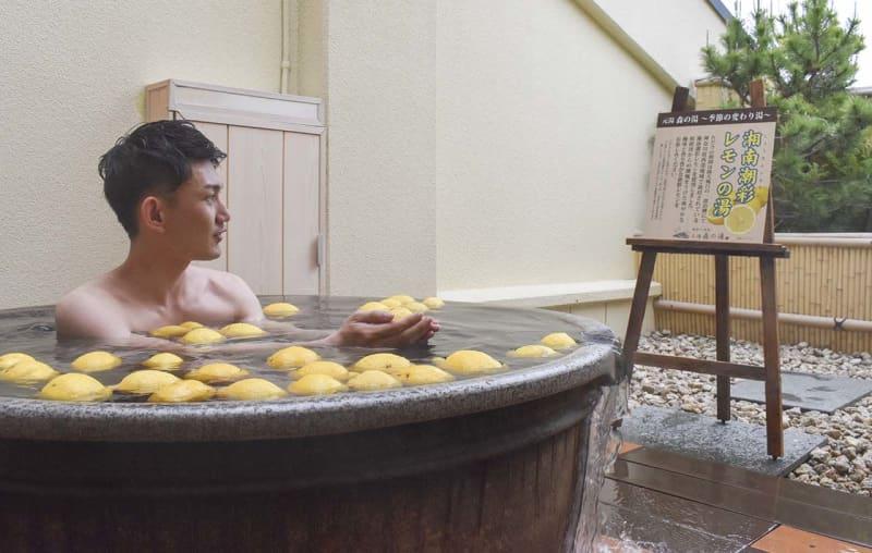 箱根・小涌園 香り爽やか、ブランド品「湘南潮彩レモン」使った変わり湯 神奈川